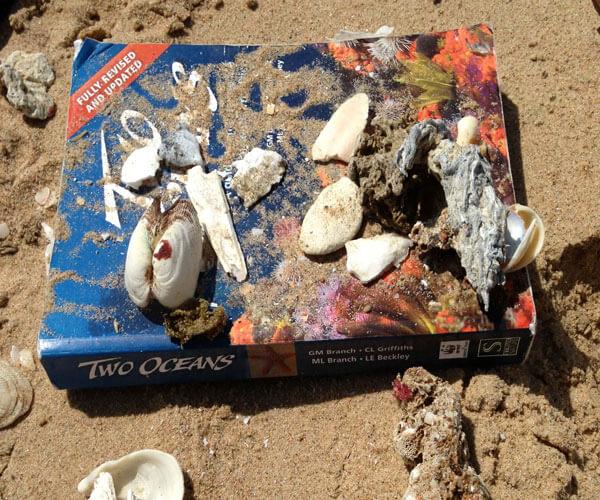 2Oceans_Marine-Conservation