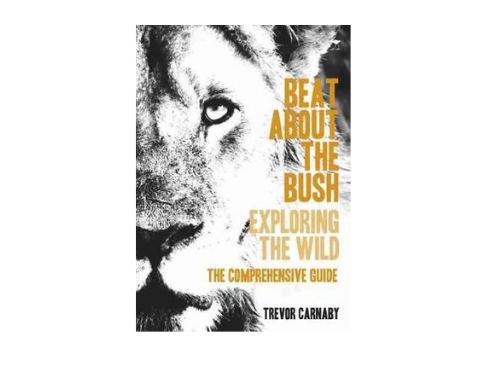 Beat About the Bush Comprehensive Guide
